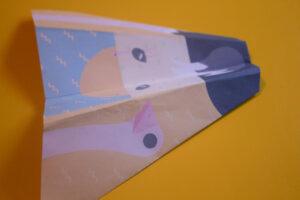 Ostrich Plane