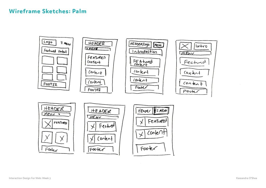 Wireframe Sketches Palm