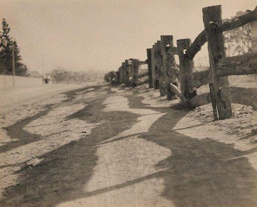 Shadow play, (circa 1919) by Harold Cazneaux